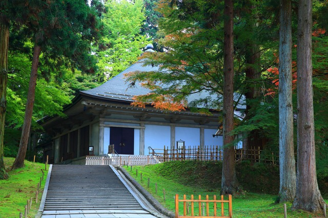A National Treasure That Glitters Gold! Wander Around Some of Tohoku's World Heritage Sites in Hiraizumi, Iwate