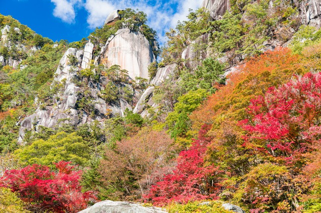 Immerse Yourself in Nature and Fall Colors! Five Recommended Spots in Koshinetsu to See the Fall Foliage