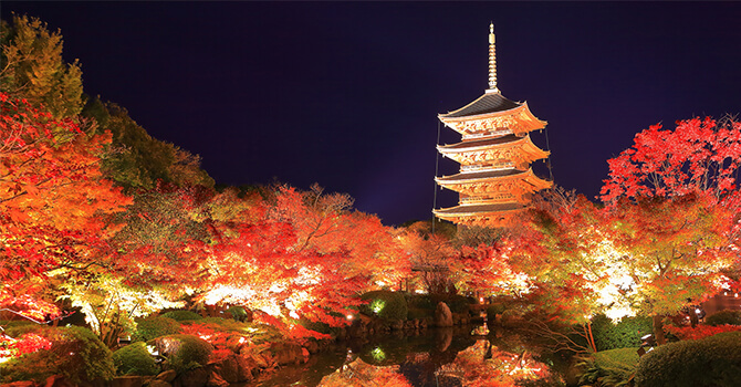 What to Do During Autumn in Japan