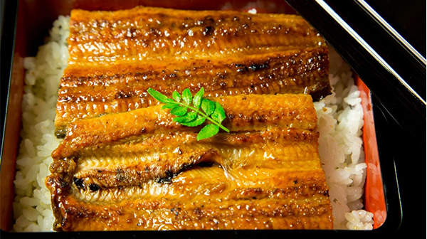 Catch, Roast, and Enjoy Your Very Own Delicious Eel in Kyoto